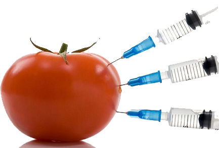 Tomato inject with toxins