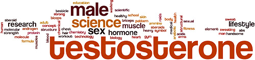 Testosterone word cloud