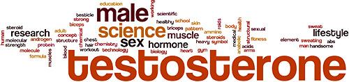 Testosterone word cloud